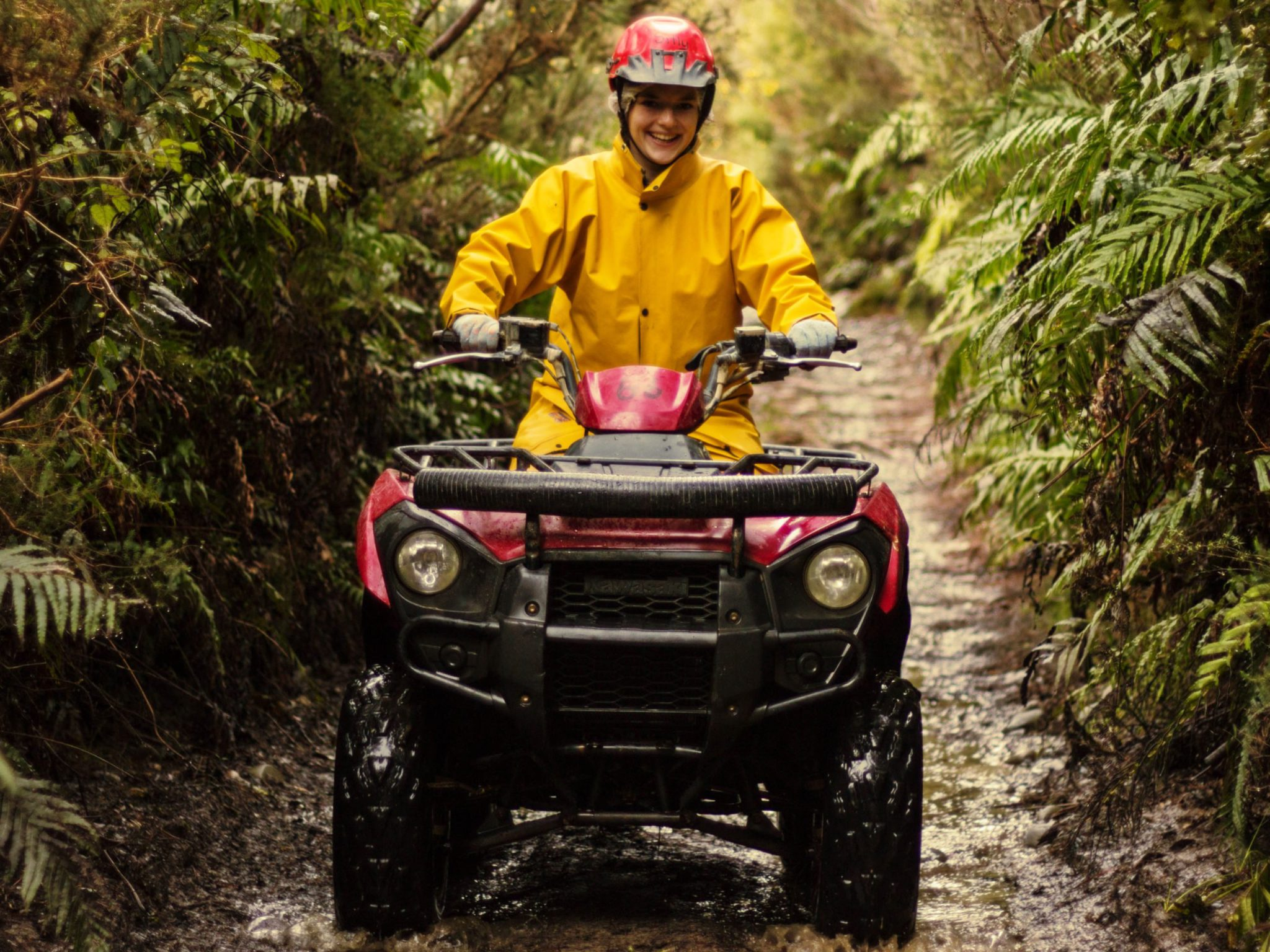 1 hour New Zealand quad biking experience in Enchanted Forest