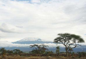 Amboseli and Tsavo West National Park luxury safari