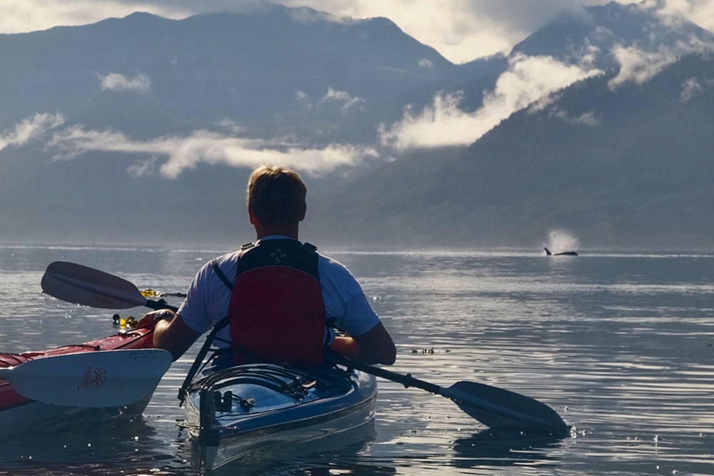 British Columbia Whales and Wilderness: Glamping in Canada