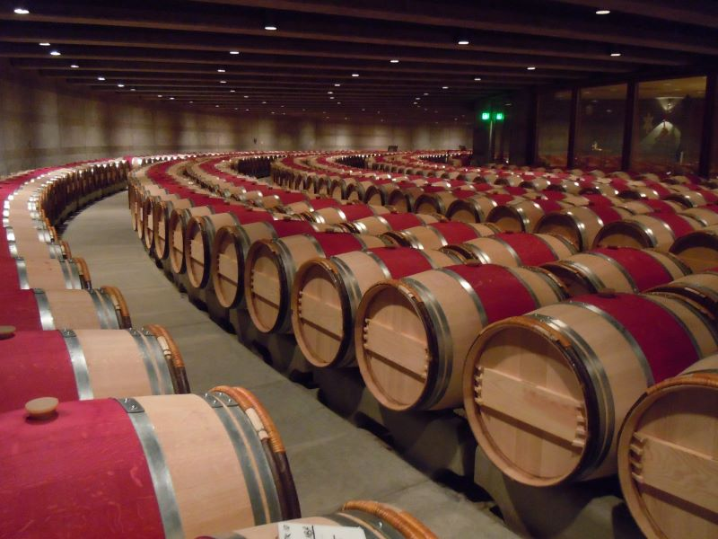 Wine Country Trekking