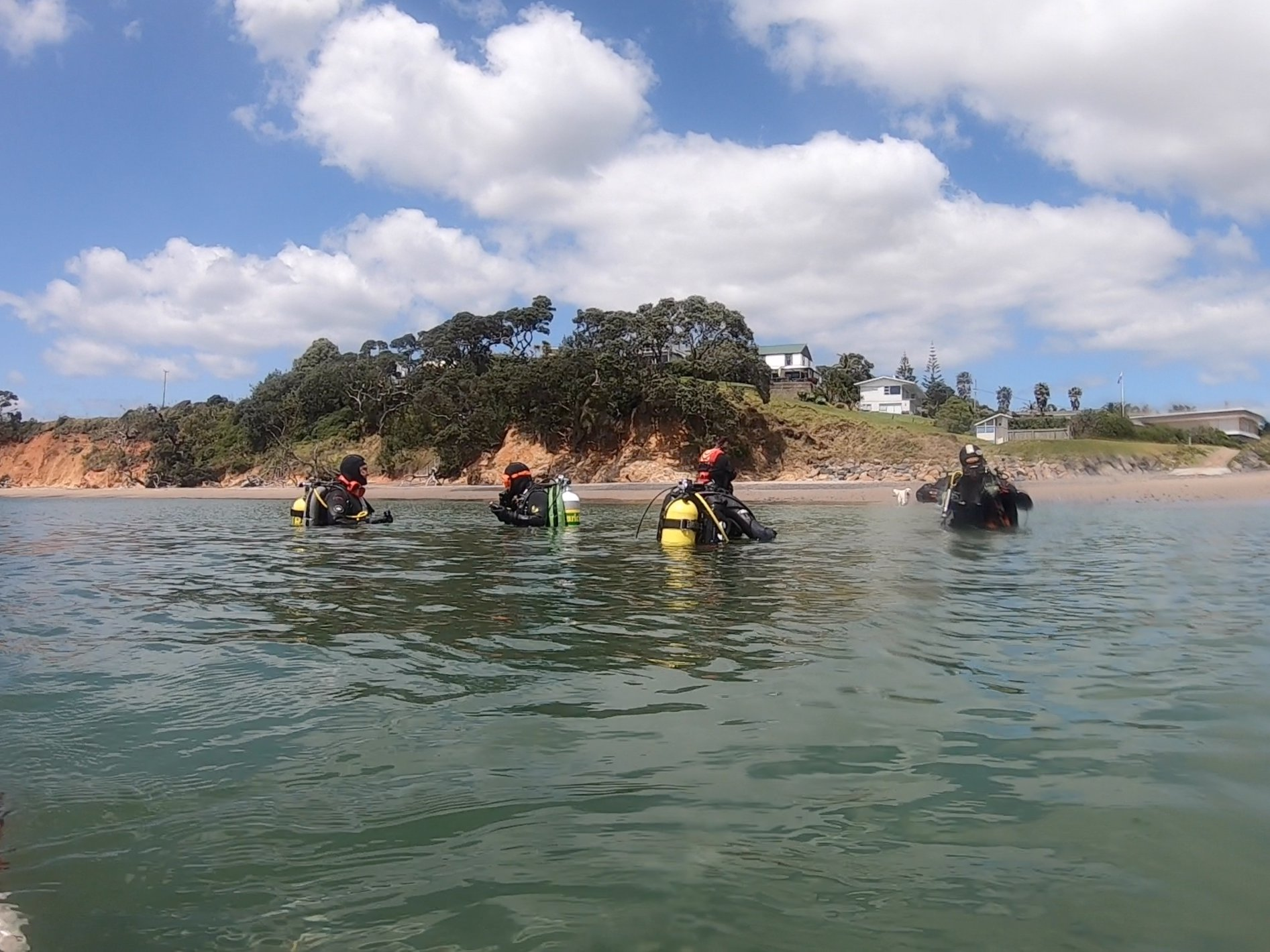 New Zealand Scuba Diving Guided Tour: 2 Dives in Whangarei