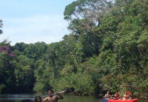 Amazon Kayaking in Brazil on the Urubu or Jatapu rivers