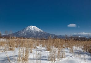 9 day Hokkaido freeride skiing and ski touring holiday Japan