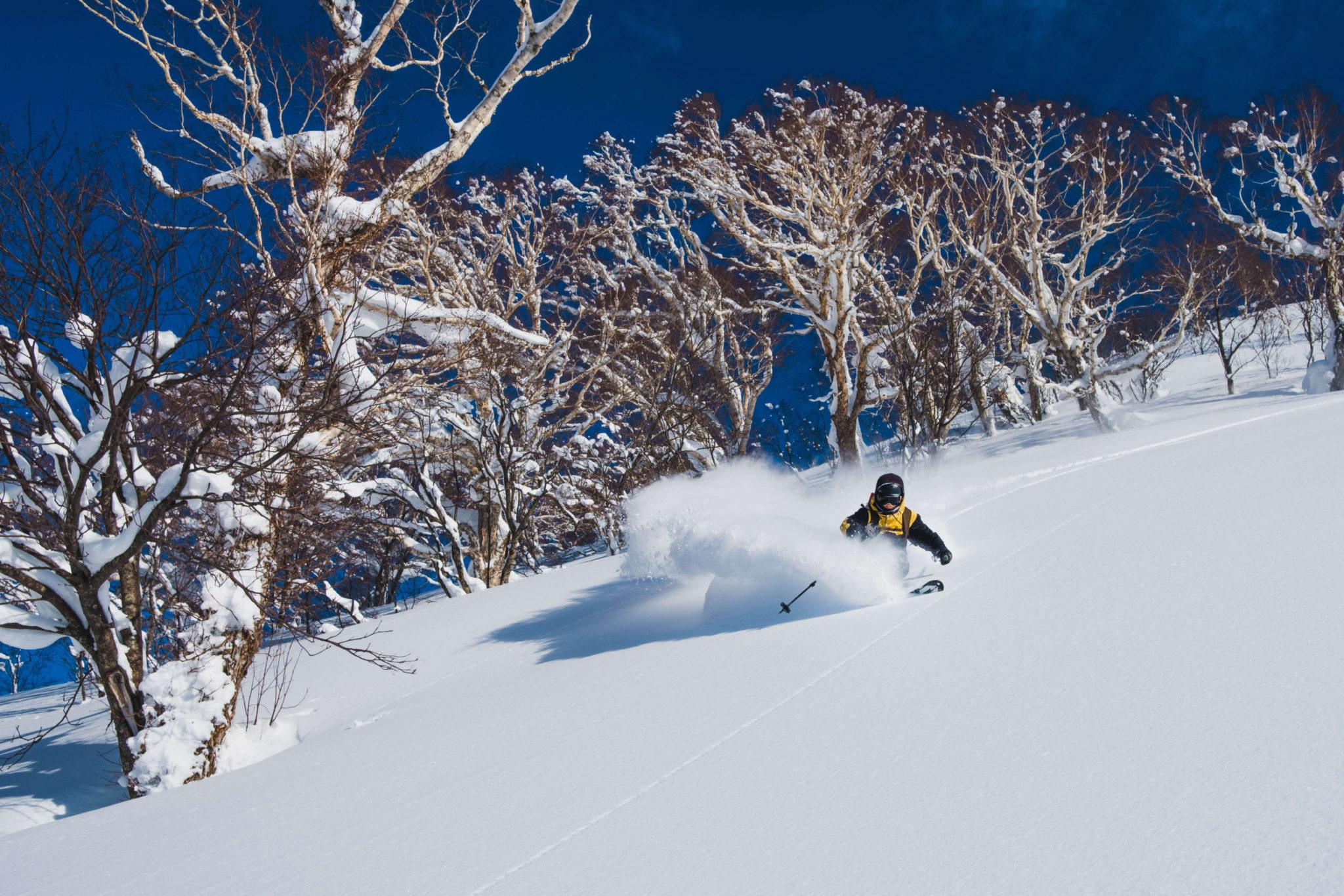 9 day Hokkaido freeride skiing and ski touring holiday in Japan