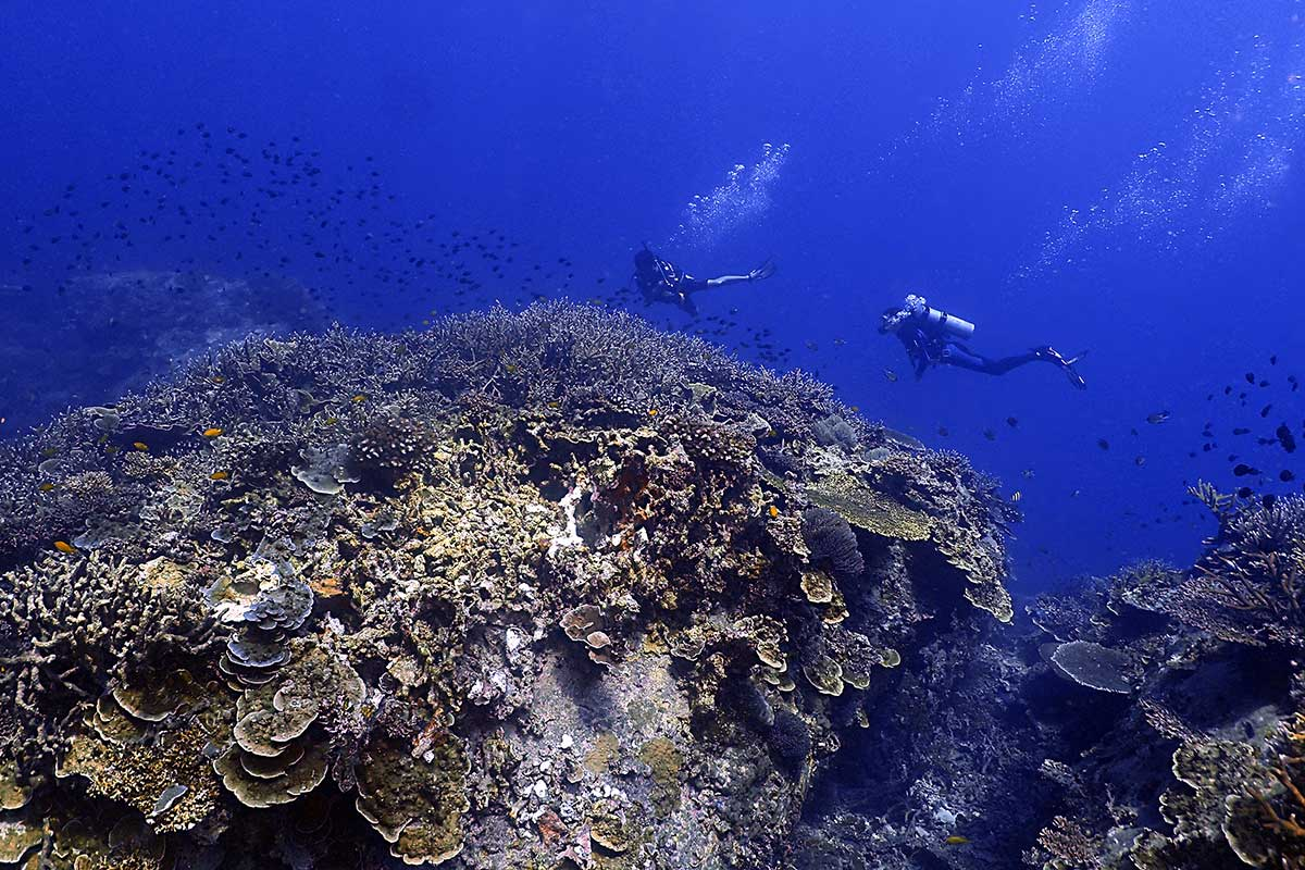 Dive holiday on Tioman Island: Malaysia scuba diving vacation
