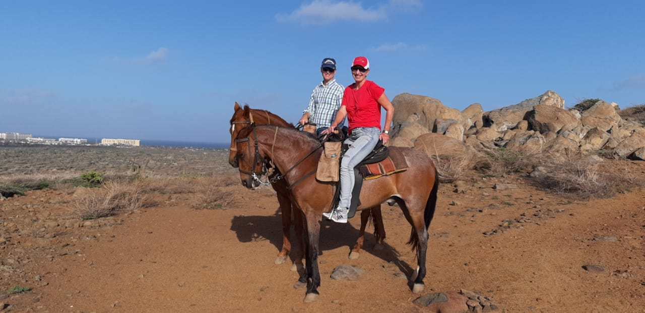 2 hour Aruba horse riding experience for advanced riders