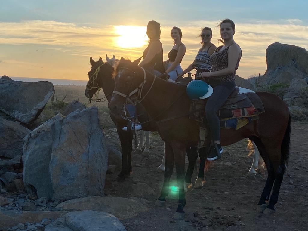 2 hour countryside sunset horseback riding experience in Aruba