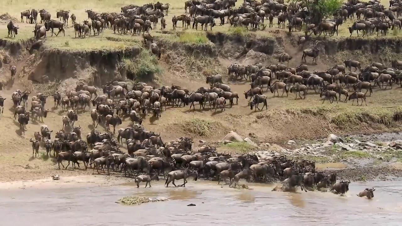 2 week Kenya & Tanzania safari adventure holiday in East Africa