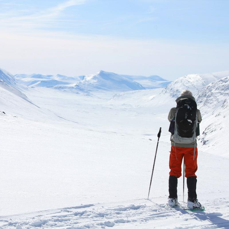 Kings Trail Arctic snowshoe trip in Sweden: Lapland snowshoeing