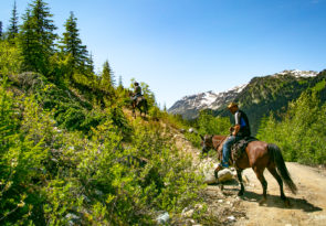 multi-Day Horseback Ride Expedition in Canada