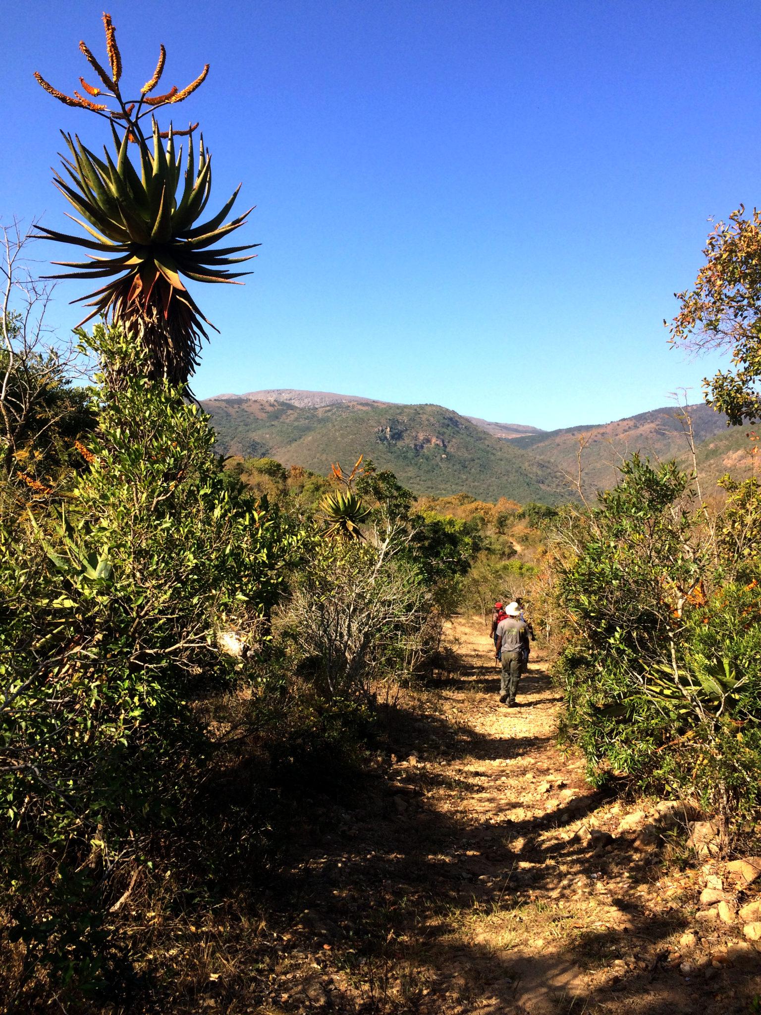 Slackpacking adventure in eSwantini: Ngwempisi Gorge hiking trip