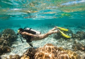 learn to scuba dive in florida