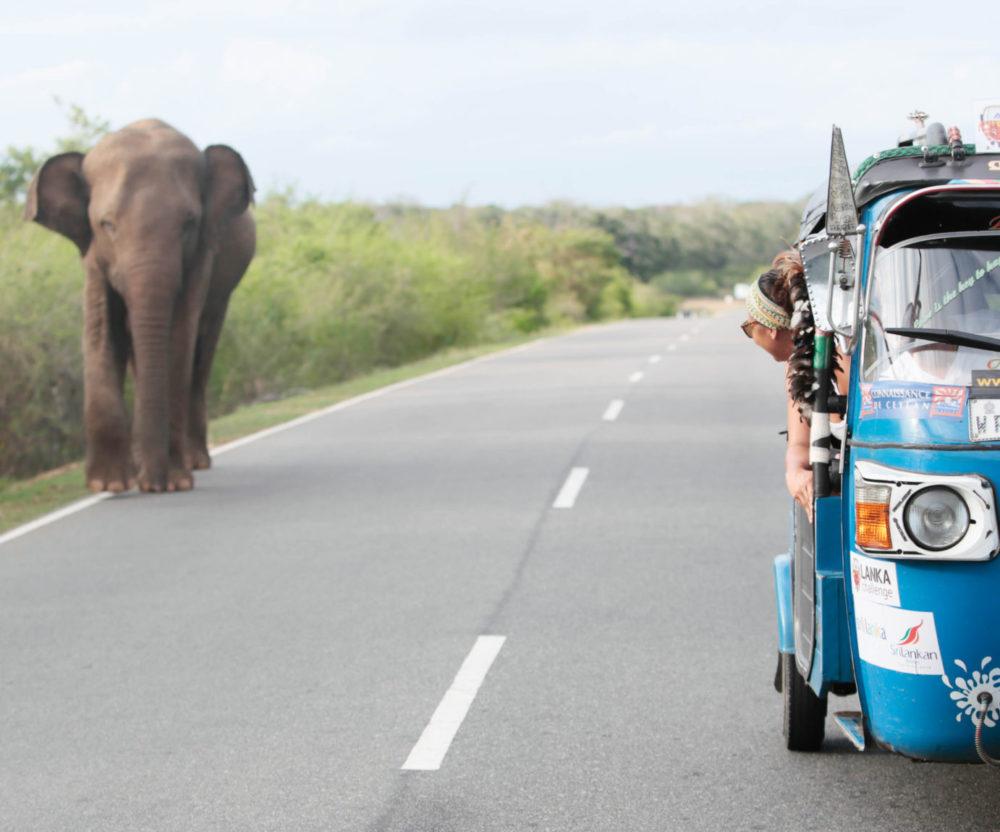 North Ceylon Tuk Tuk road trip: Sri Lanka adventure holiday