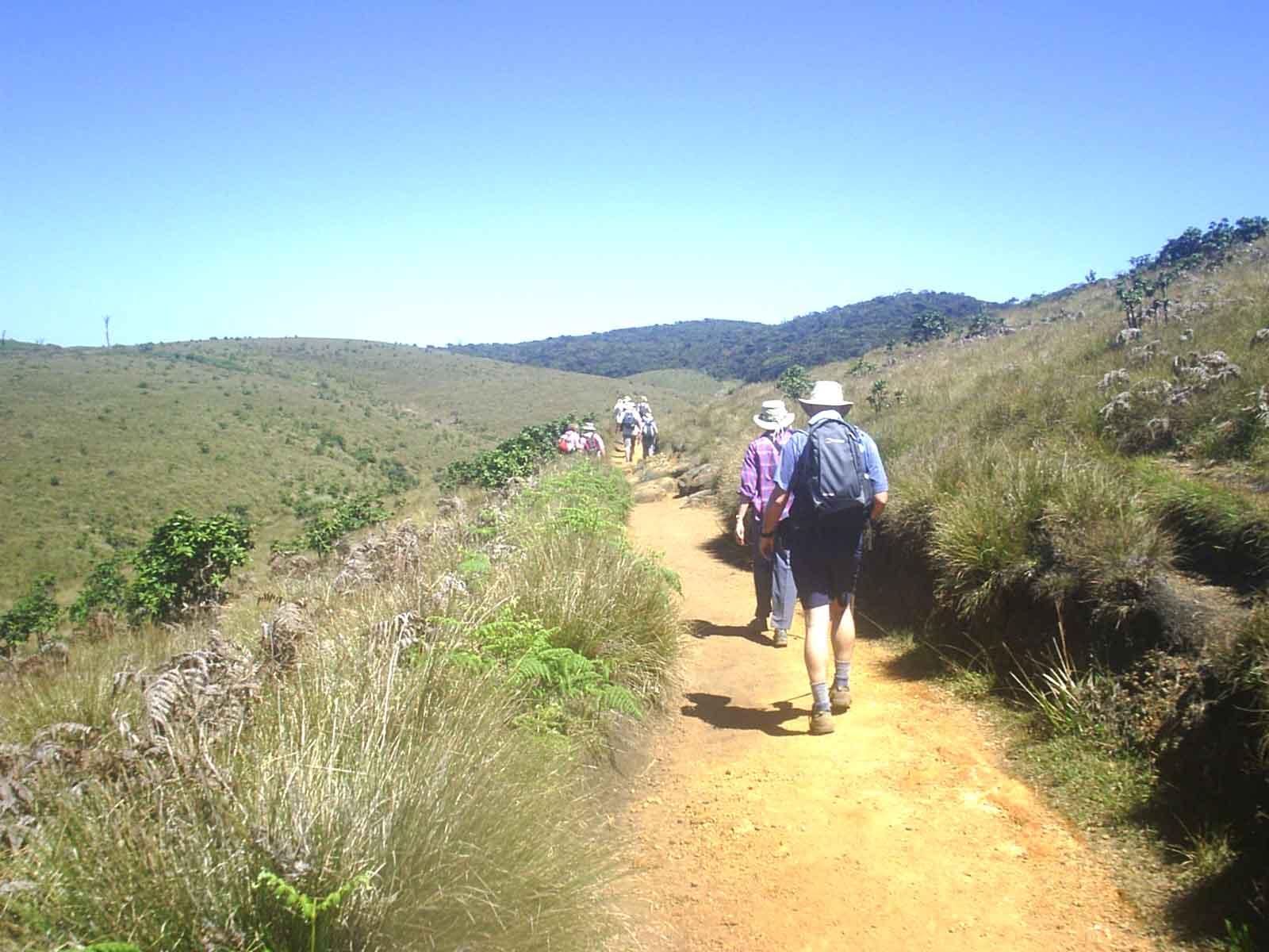 Hike Kirigalpoththa Mountain: Horton Plains hiking trip Sri Lanka