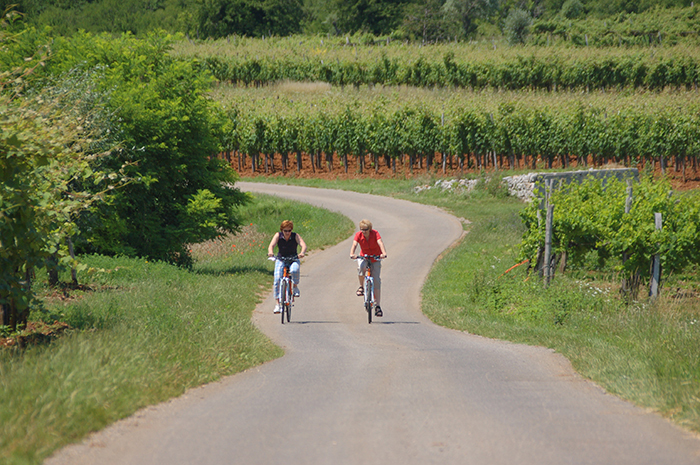 Slovenia cycling trip: Emerald cycle tour from Ljubljana to Piran