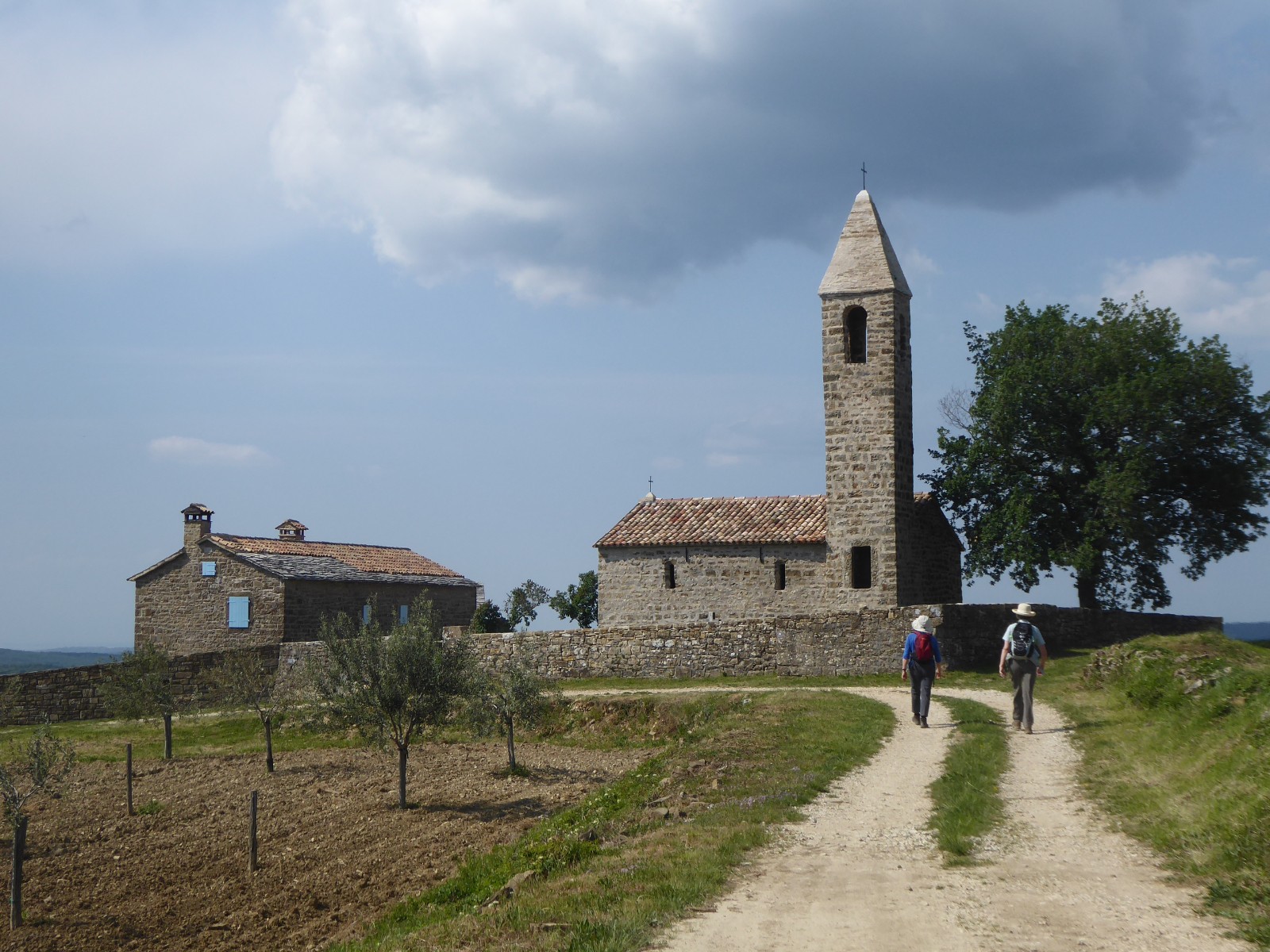 8 day guided Croatia walking holiday and culture tour in Istria
