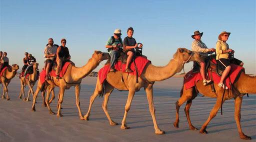 Sinai Desert camel riding experience in Egypt with Bedouin dinner