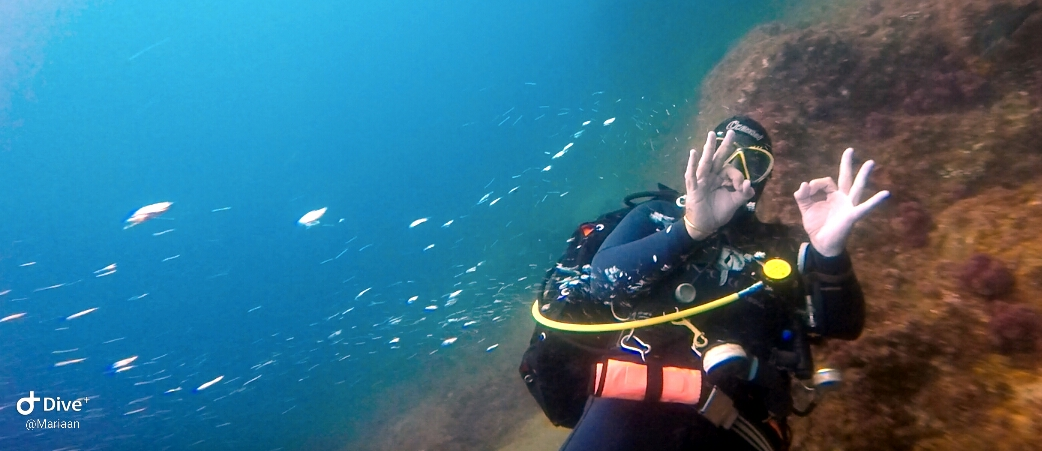 4 day South Africa PADI Open Water Course in Umkomaas