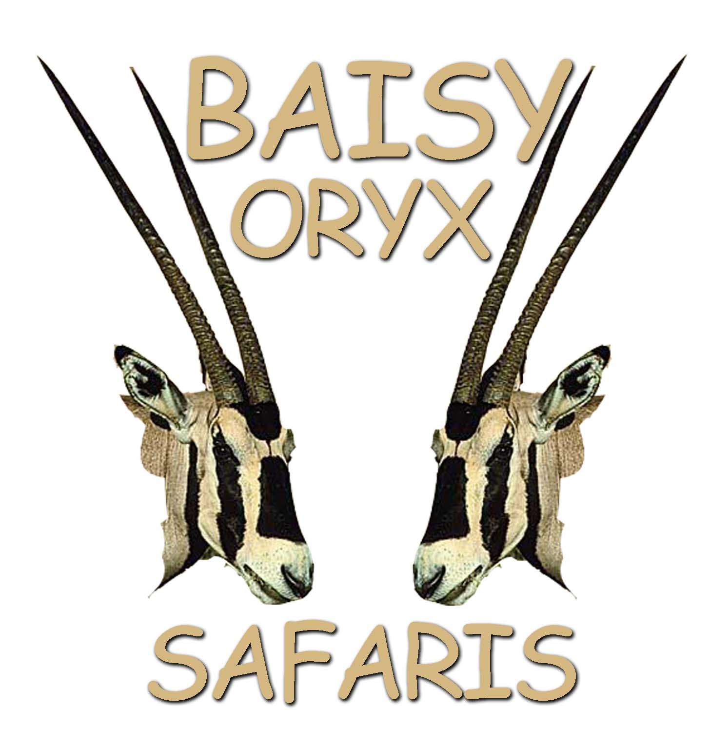Baisy Oryx Tours, Travel and Safaris Ltd (BOTTS)