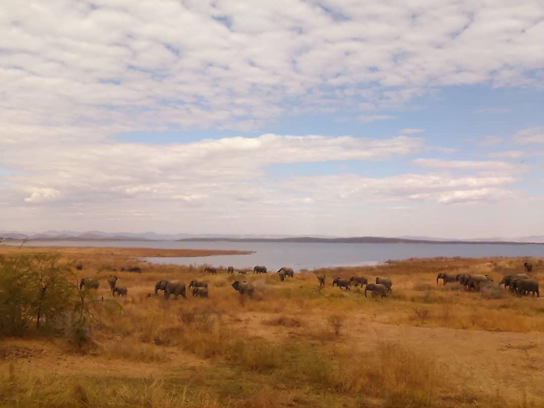 Luxury Lake Kariba safari camping in Zimbabwe at Warthogs