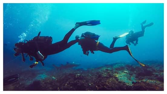 Umkomaas Discover Scuba Diving Course in South Africa