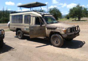 3 Days Semi Luxury African Kenya Safari to Masai Mara