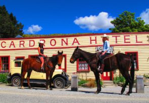 3.5hr New Zealand high country pub trail horse trek in Cardrona