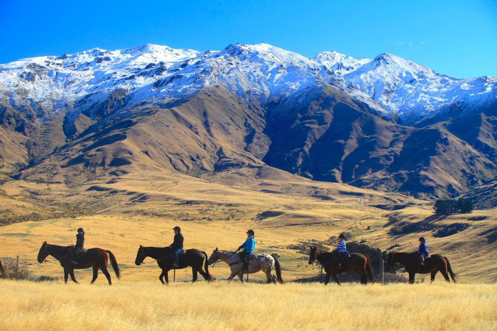 New Zealand Gold Discovery horse trek trail image courtesy of the Cadrona