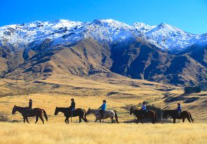 New Zealand Gold Discovery horse trek trail
