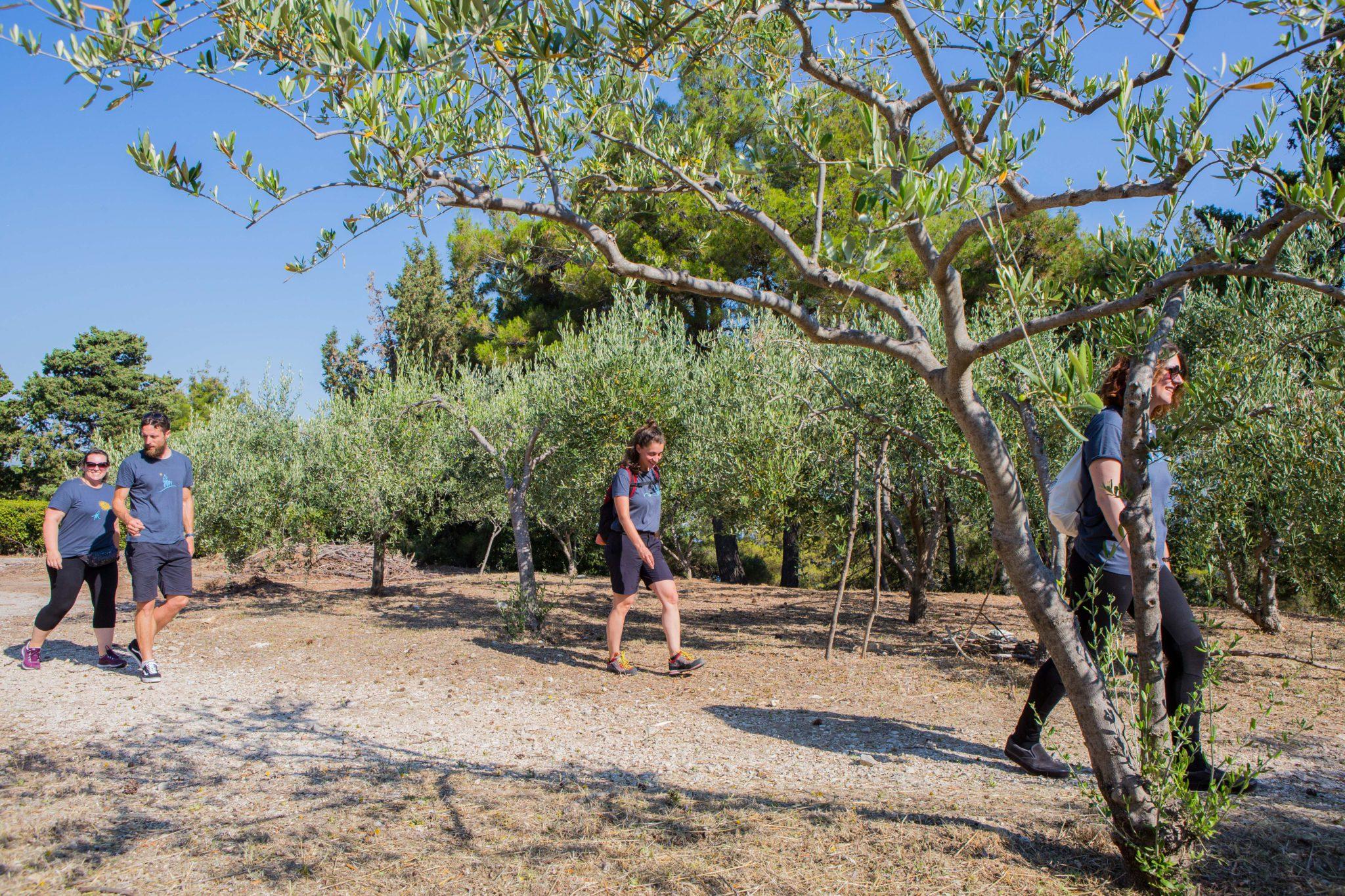 7 Day Walk and hike from Split to Dubrovnik: Hiking in Croatia