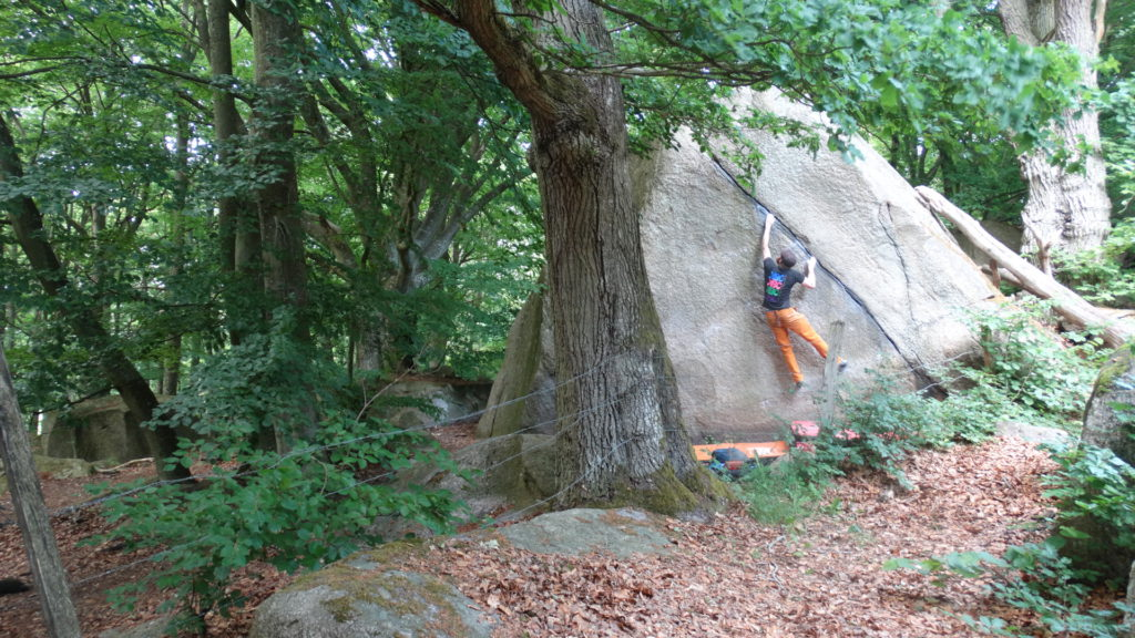 Climber Simon Rose bouldering on a monolith in a wood at Kjugekull in Sweden