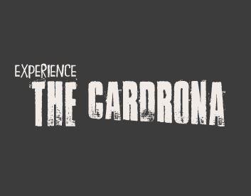 The Cardrona Horse Treks & Quad Bike Tours