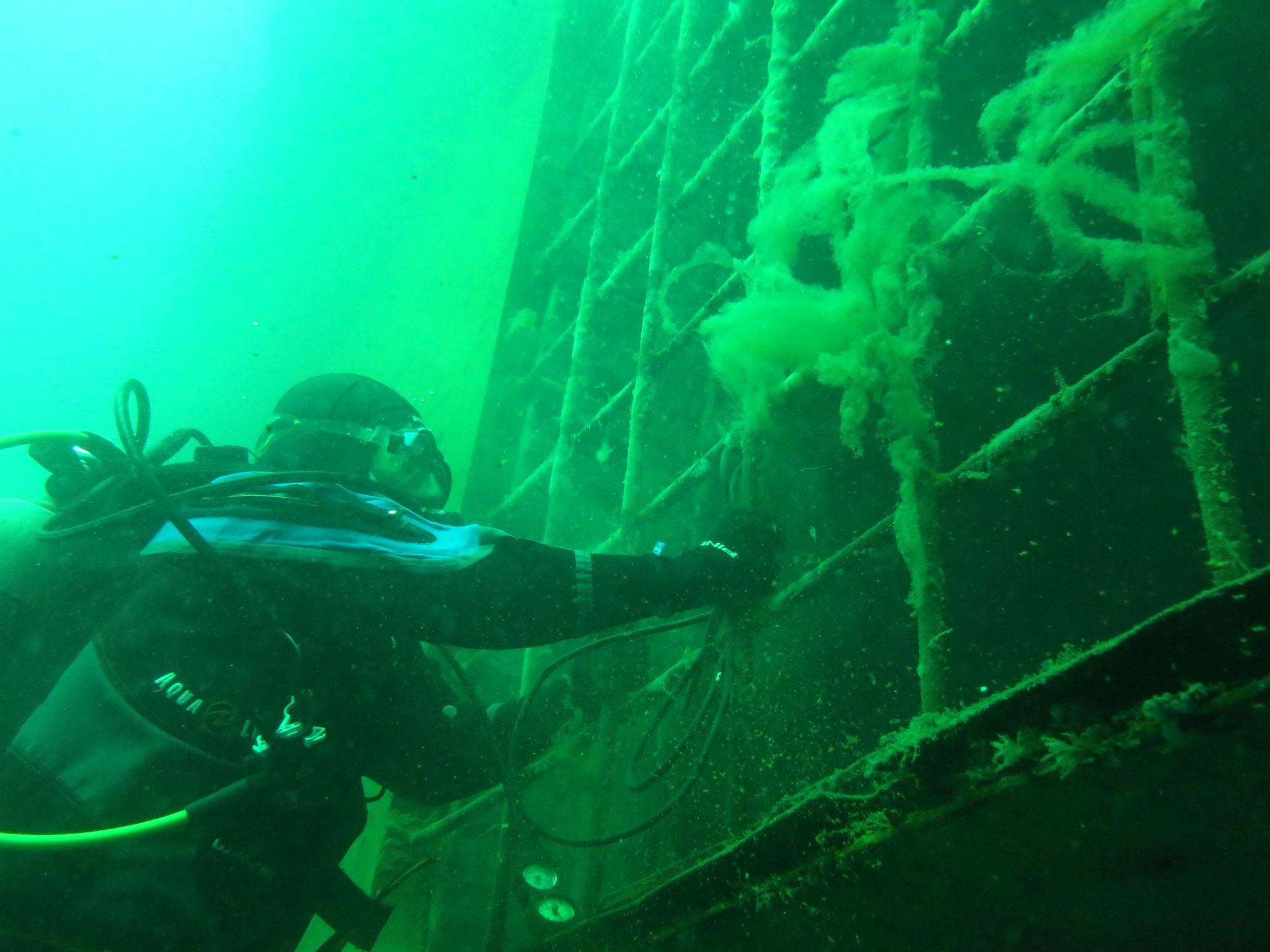 PADI Dive Master Course in Argentina