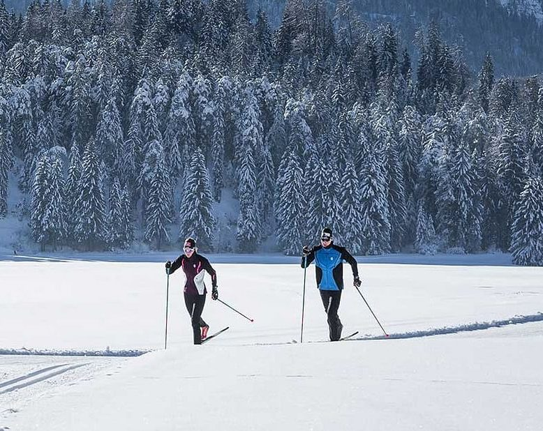 Arctic Cross Country Skiing in Lapland