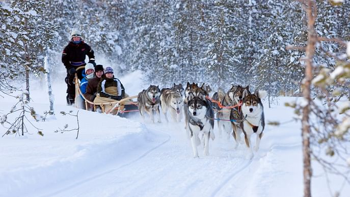 Lapland multi activity adventure holiday in Rovaniemi, Finland