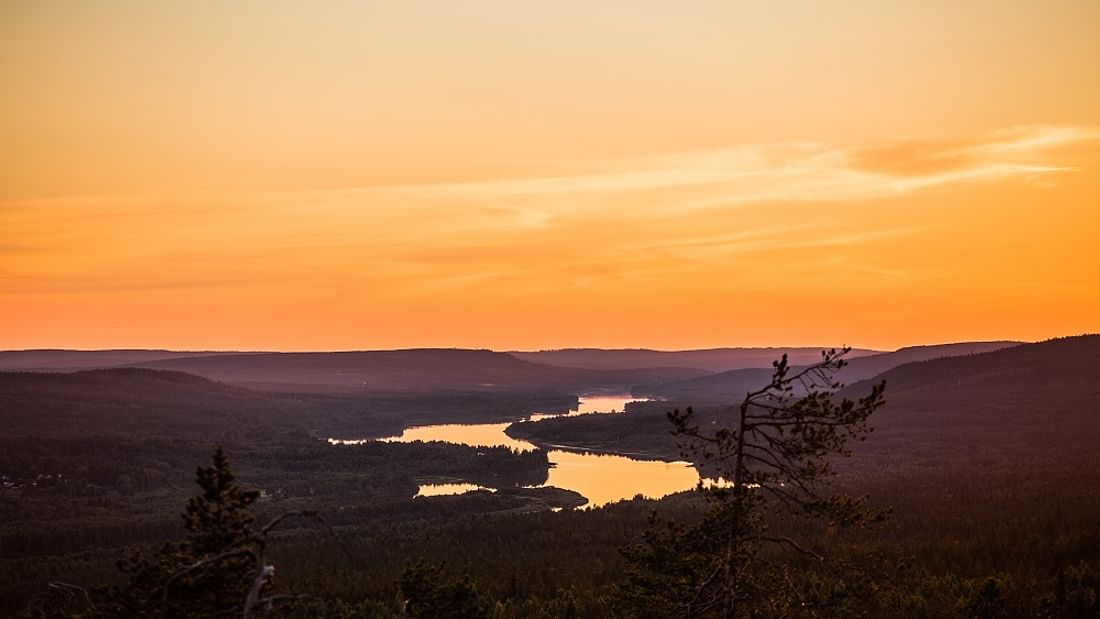 Midnight sun photography: Arctic safari experience in Finland