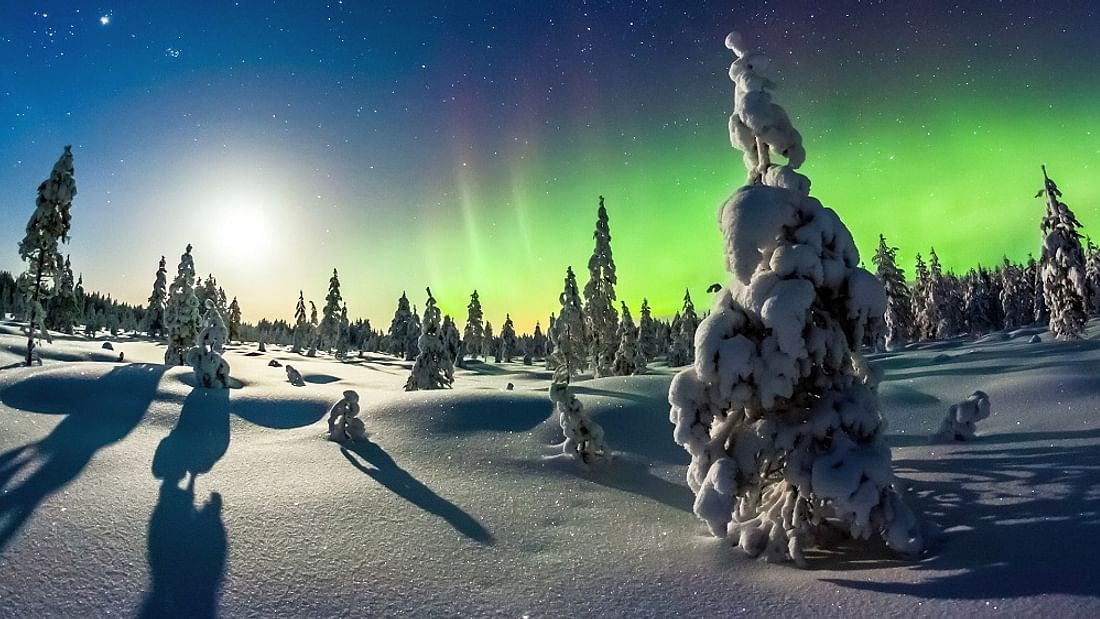 5-Day Wild Lapland multi activity holiday in Pello, Finland