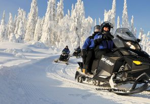 Arctic Circle Family Day: Husky Sleigh Ride in Lapland