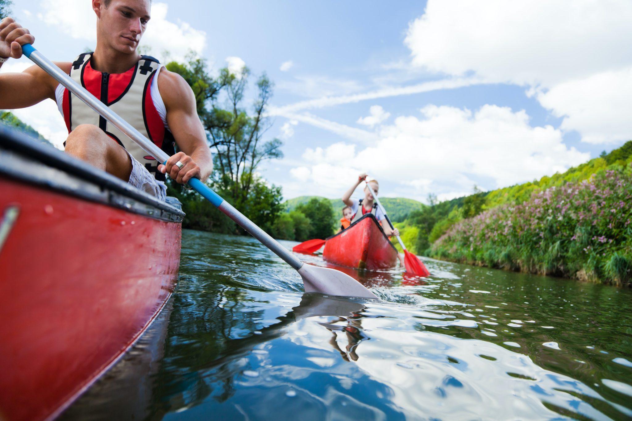 4 hour Totnes canoeing mini tour of Dart River in Devon