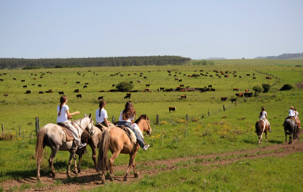 best safe countries for active holidays horse riding and ranching in Uruguay image courtesy of Urugay Natural Facebook page