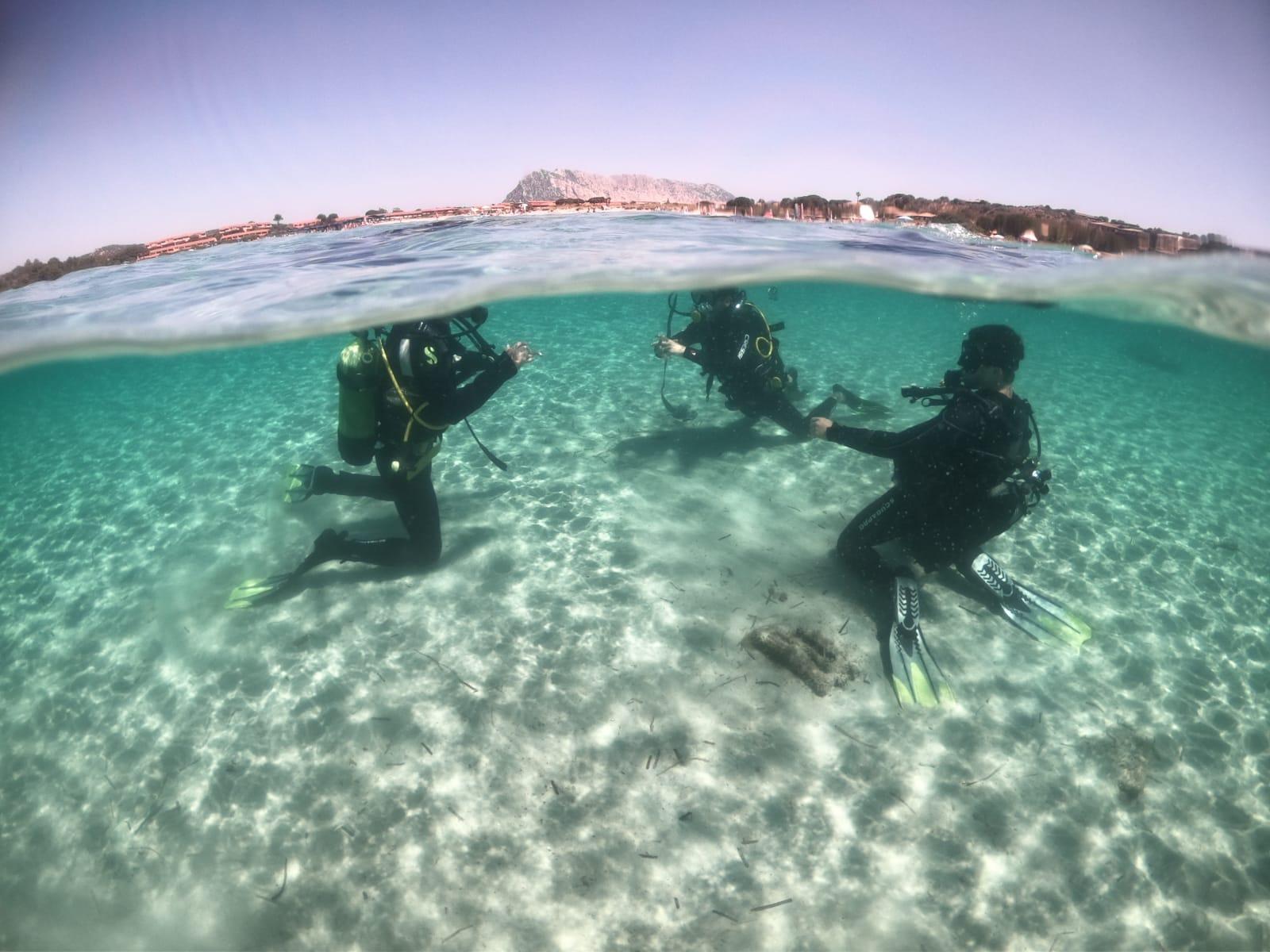 Tavolara discover scuba diving experience in Sardinia, Italy