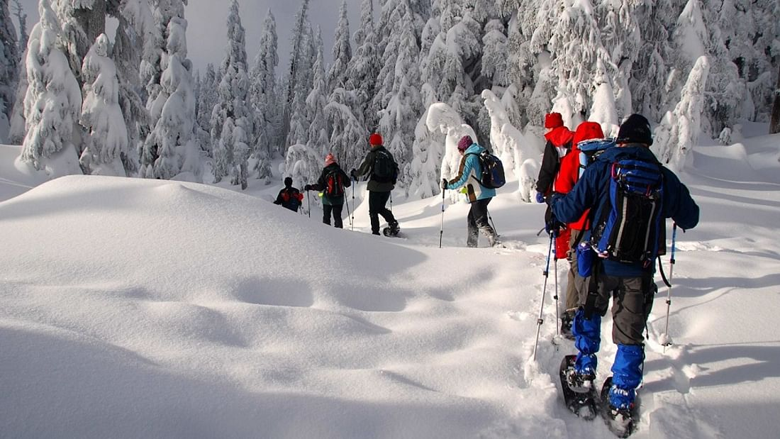 Lapland snowshoeing experience in the Arctic Circle, Finland