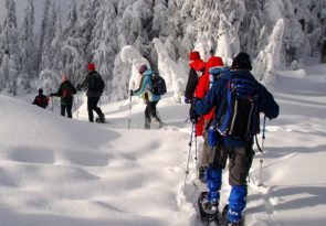 Lapland Winter Snowshoeing Arctic Experience