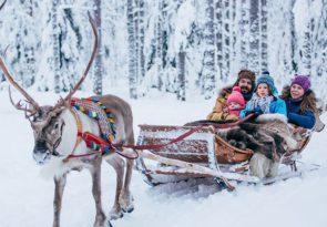 Finland Reindeer Sleigh Ride Experience in Lapland