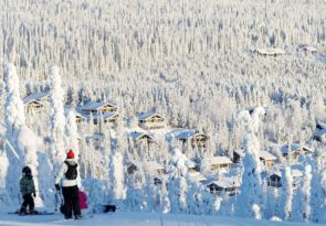 Skiing in Lapland & Arctic Ice Fishing Day Tour