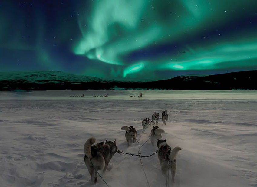 Hunting Lapland Northern Lights with Huskies