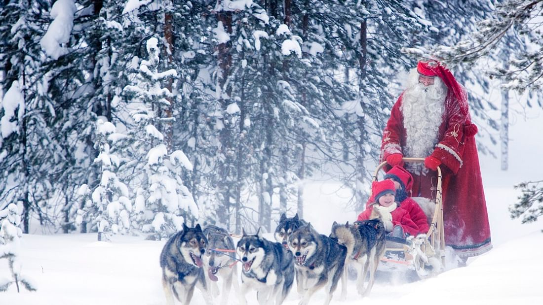 Lapland multi activity day trip in Finland: Dogsled, hike & more