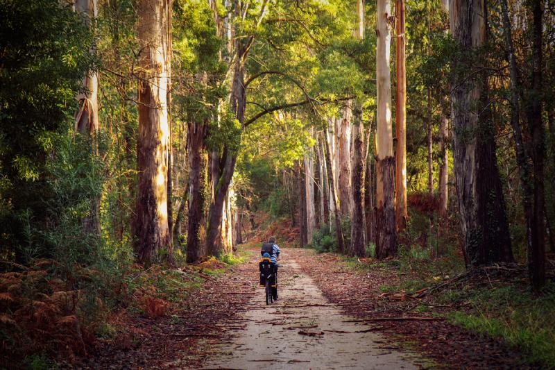 8 day Portugal self-guided eBiking holiday from Porto to Lisbon