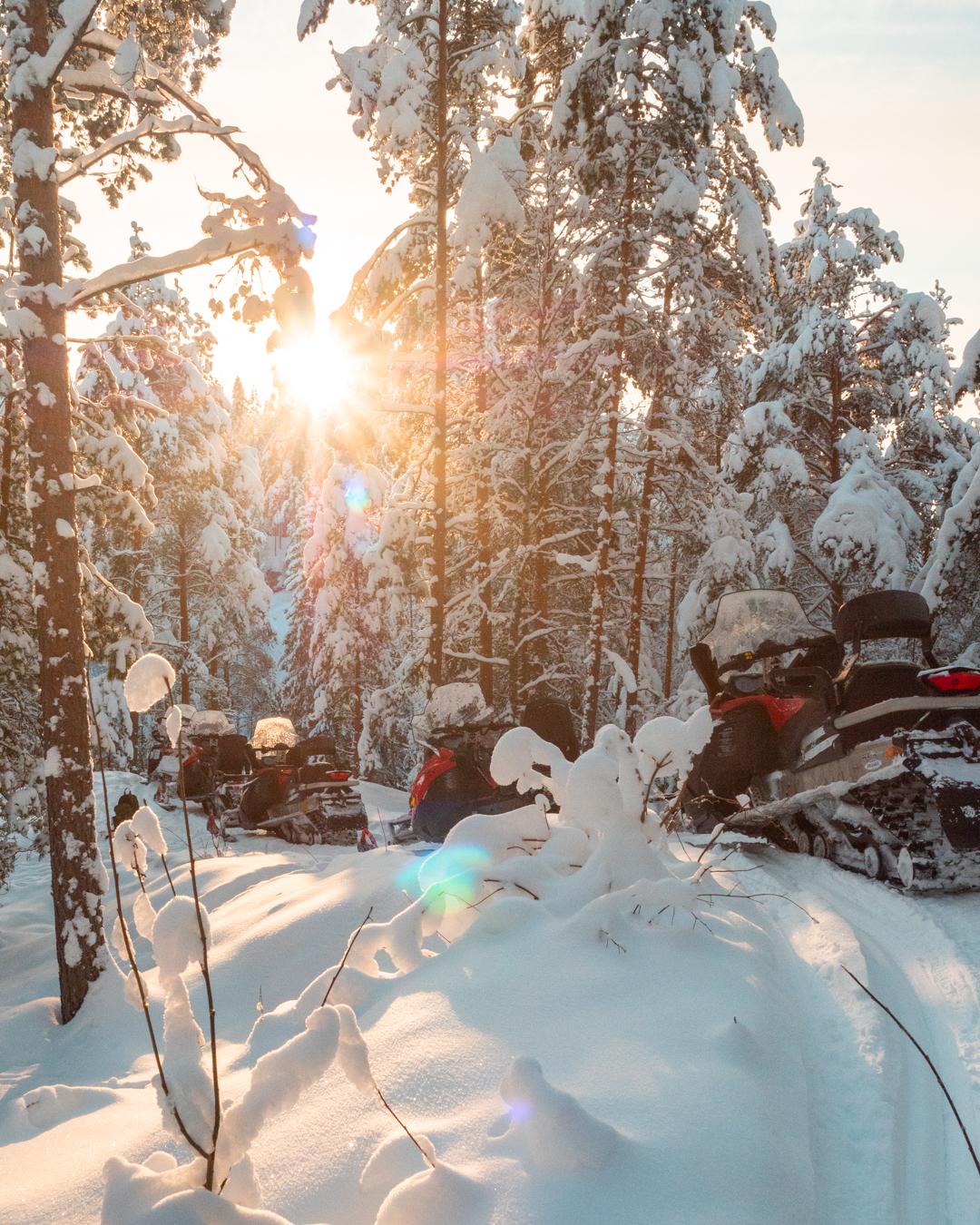 90 min Finland Guided Snowmobile safari in Porokylä