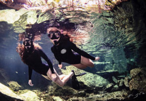 Snorkel in a Cenote in the Mexican Caribbean